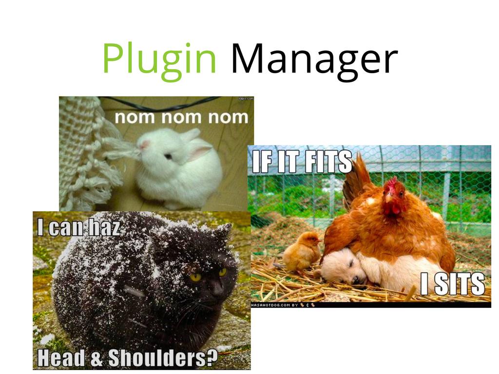 Plugin Manager