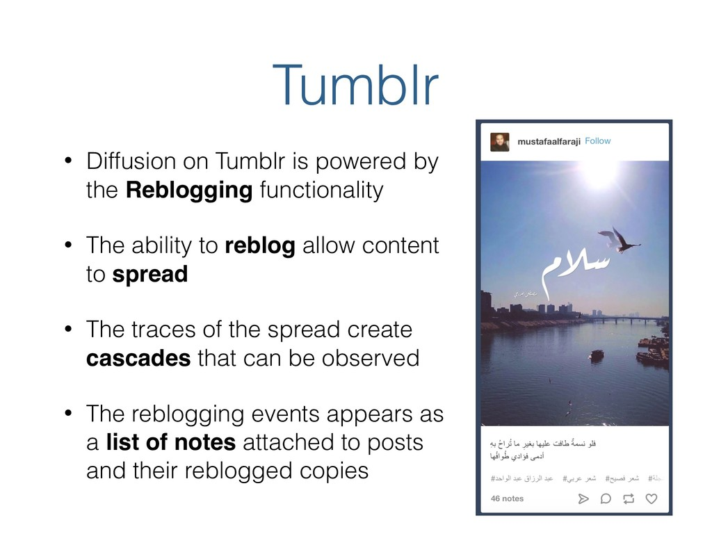 Tumblr • Diffusion on Tumblr is powered by the ...