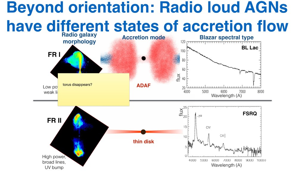 Beyond orientation: Radio loud AGNs have differ...