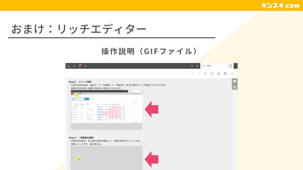 おまけ:リッチエディター 操作説明(GIFファイル)