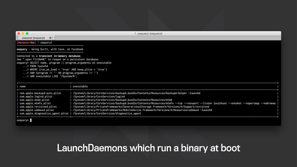 LaunchDaemons which run a binary at boot