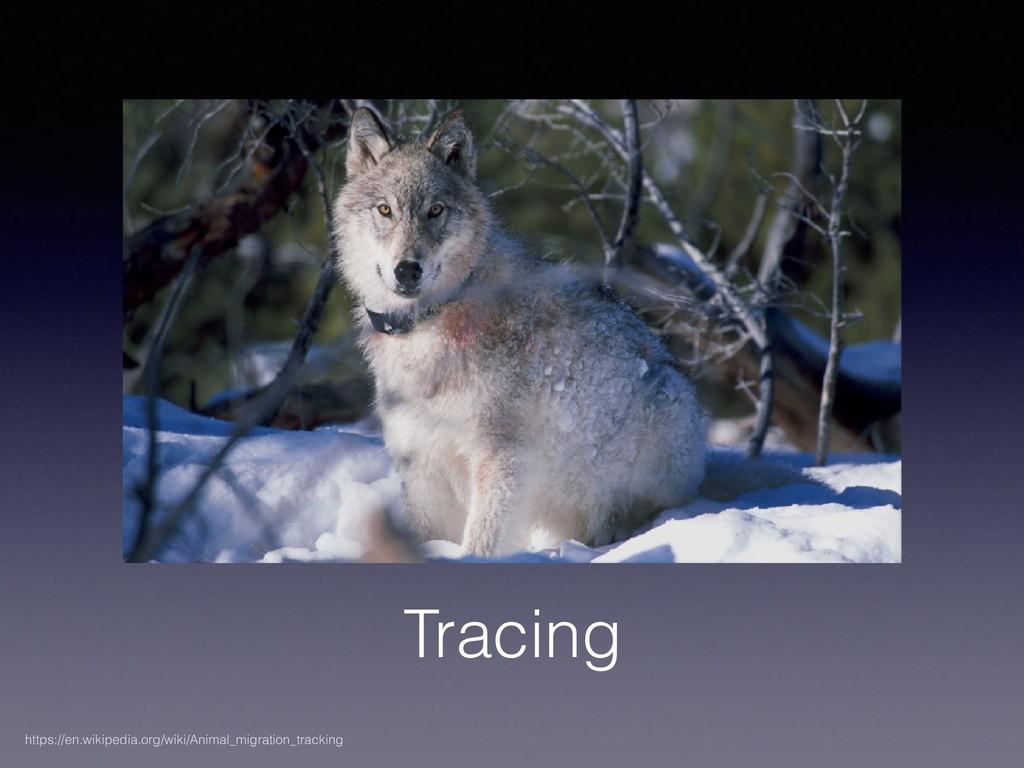 Tracing https://en.wikipedia.org/wiki/Animal_mi...