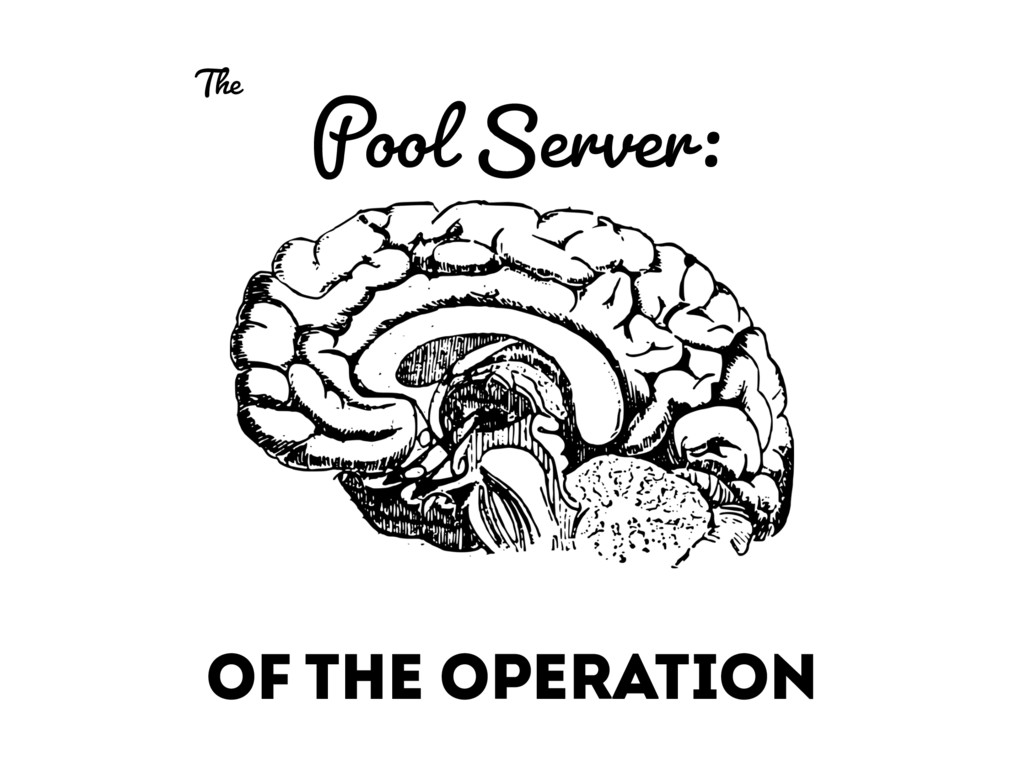 Pool Server: OF THE OPERATION The