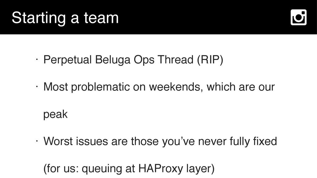 Starting a team • Perpetual Beluga Ops Thread (...
