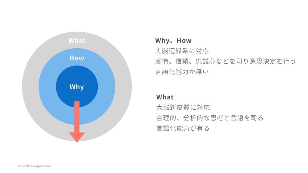 Why、How ⼤脳辺縁系に対応 感情、信頼、忠誠⼼などを司り意思決定を⾏う ⾔語化能⼒が無い...