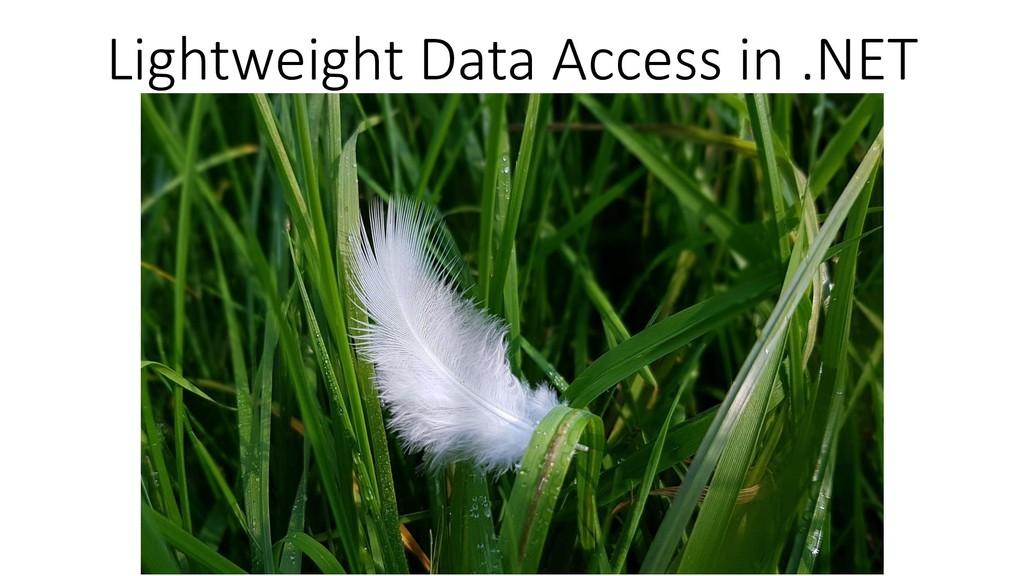Lightweight Data Access in .NET