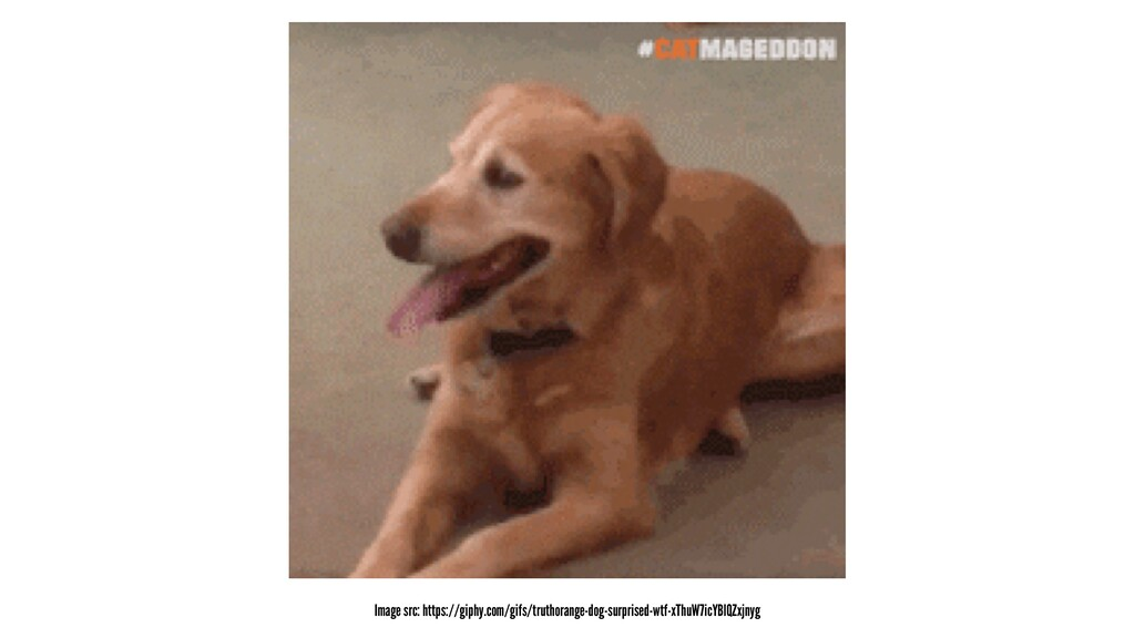 Image src: https://giphy.com/gifs/truthorange-d...