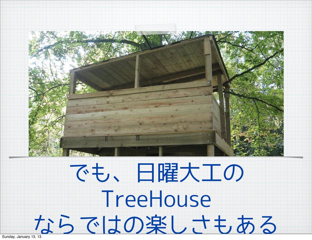 でも、日曜大工の TreeHouse ならではの楽しさもある Sunday, January ...