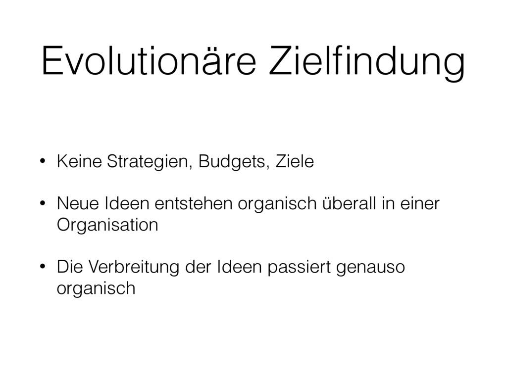 Evolutionäre Zielfindung • Keine Strategien, Bud...