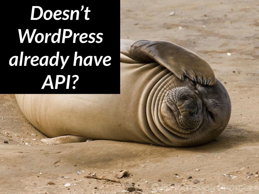 Doesn't WordPress already have API?