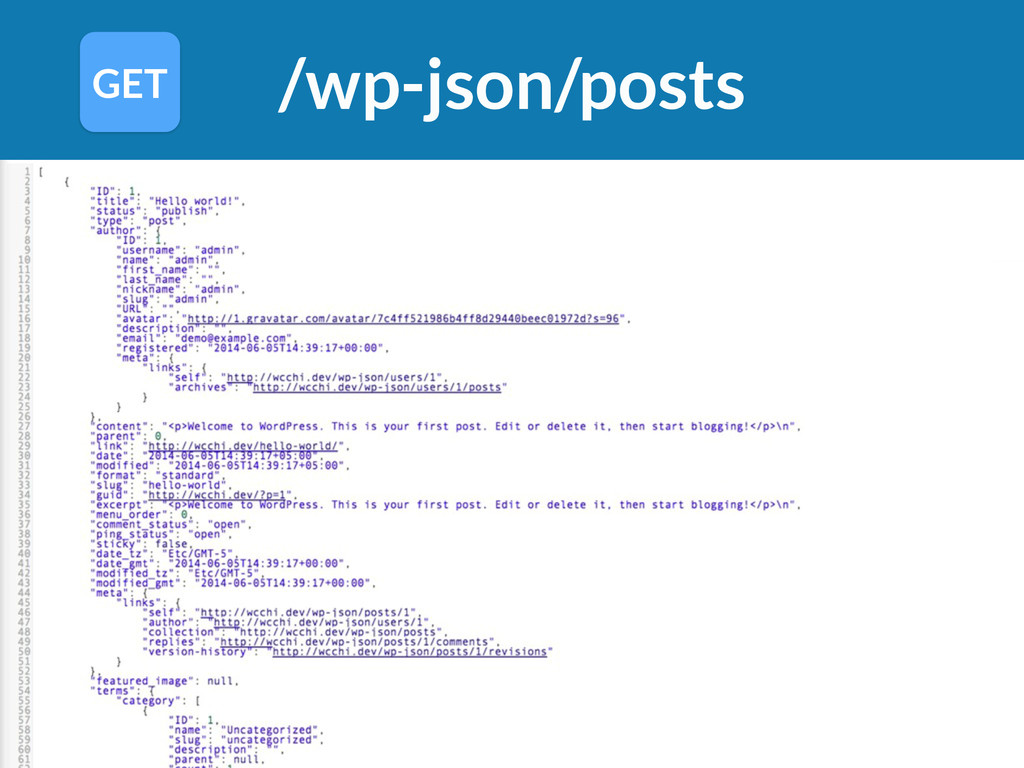 /wp-json/posts GET
