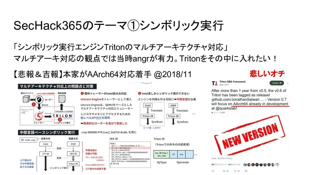 SecHack365のテーマ①シンボリック実行 「シンボリック実行エンジンTritonのマルチ...