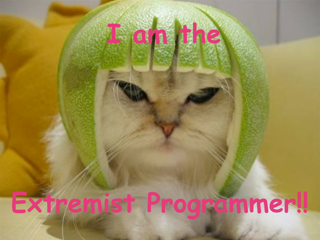 I am the Extremist Programmer!!
