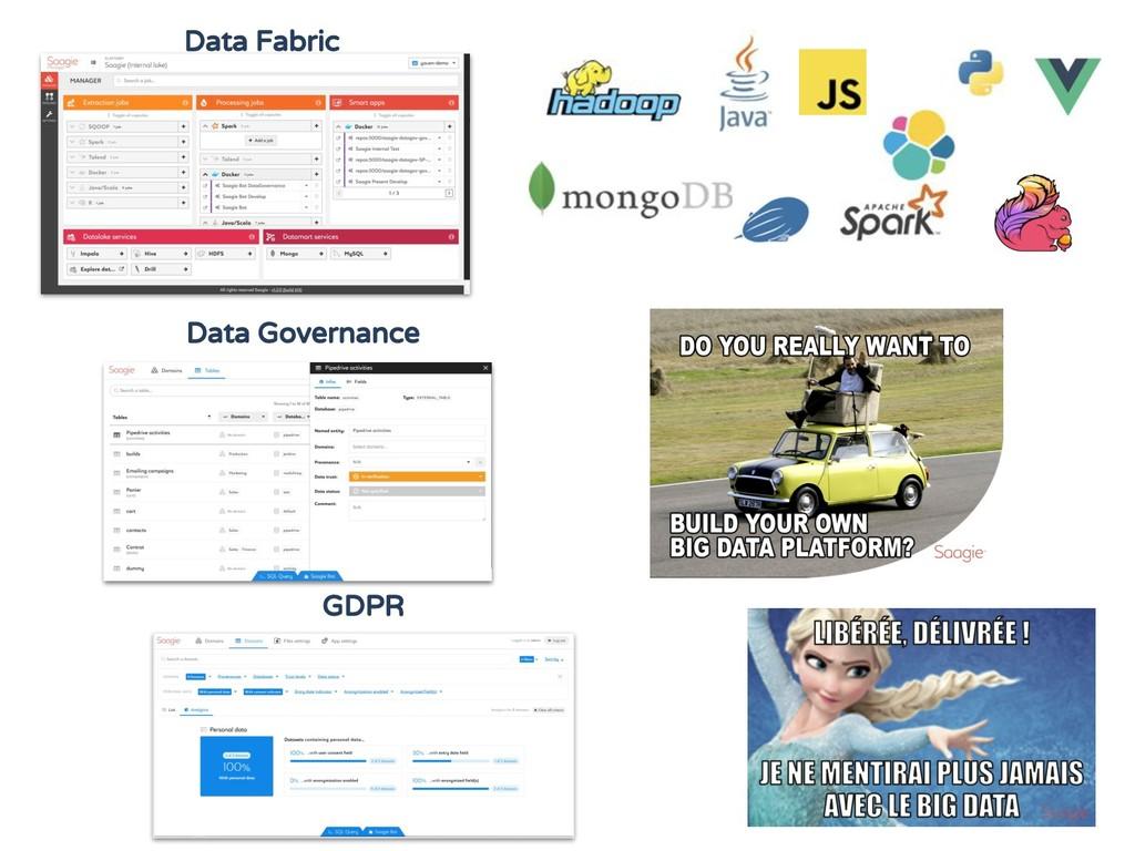 GDPR Data Governance Data Fabric