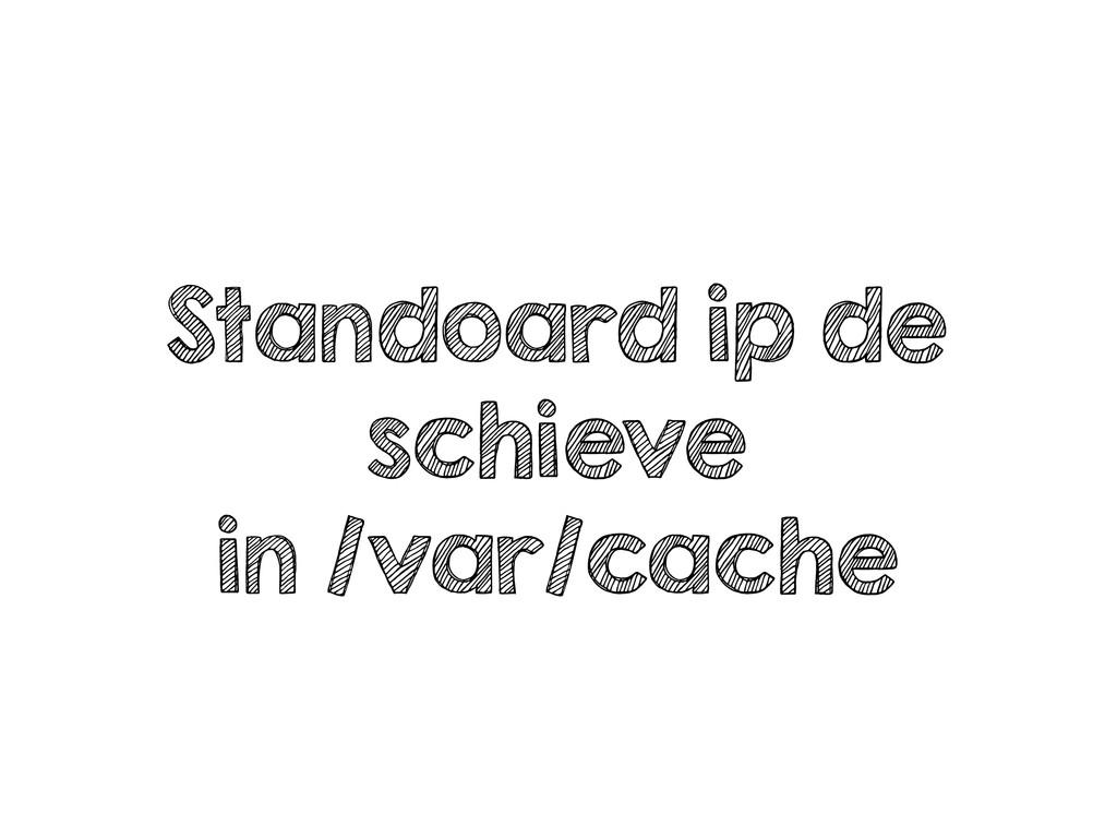 Standoard ip de schieve in /var/cache