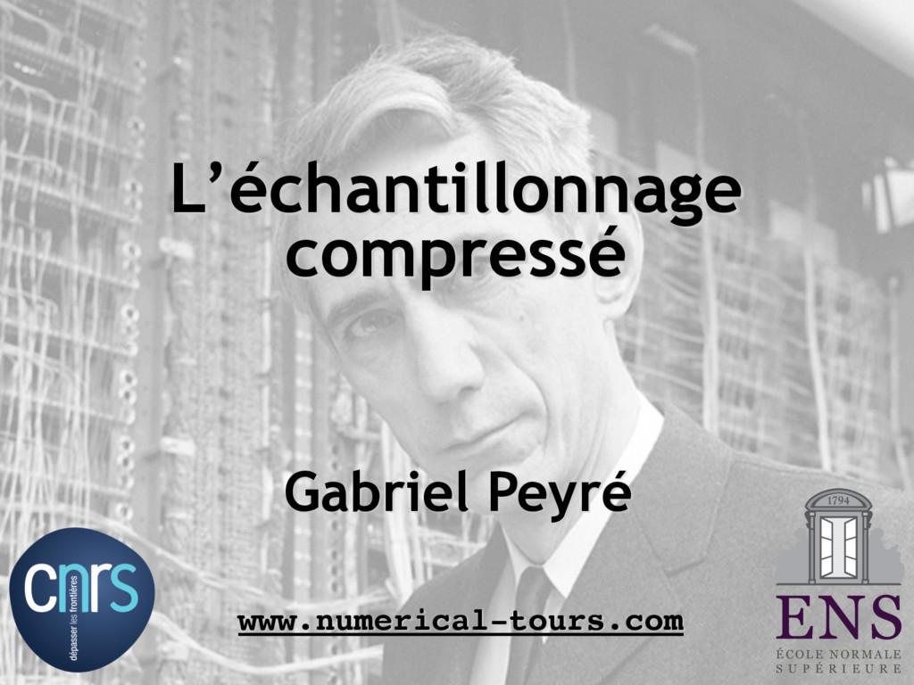 Gabriel Peyré www.numerical-tours.com L'échanti...