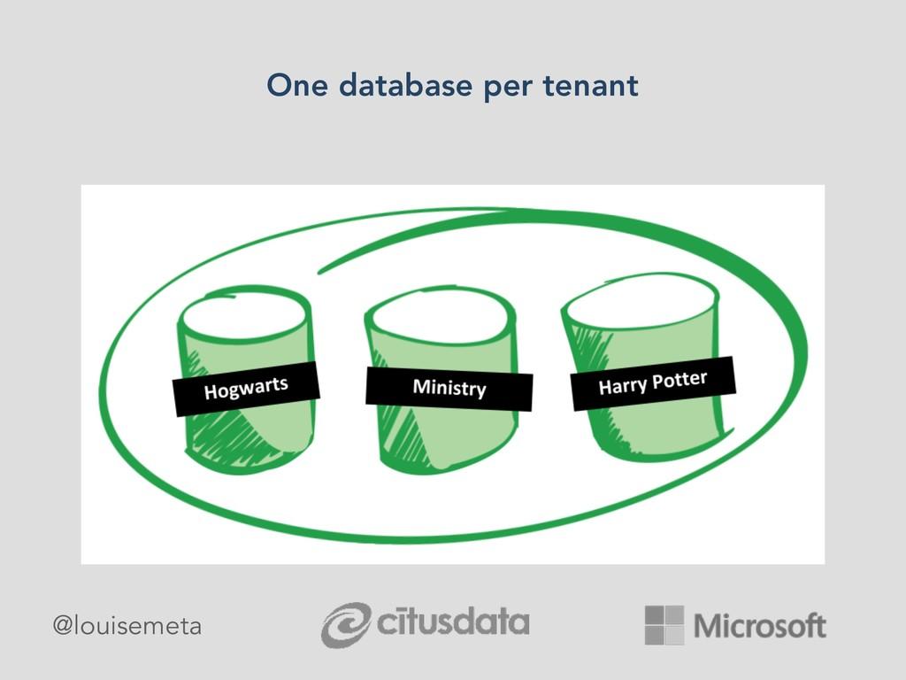 @louisemeta One database per tenant