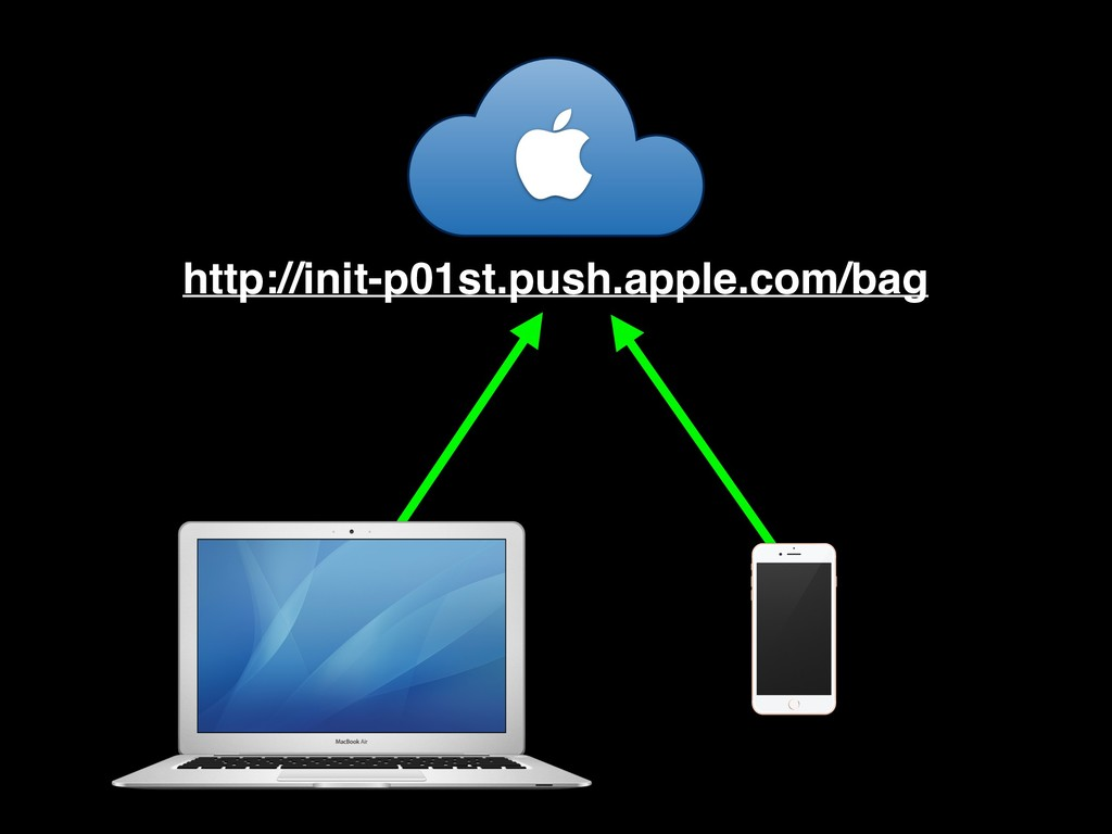  http://init-p01st.push.apple.com/bag