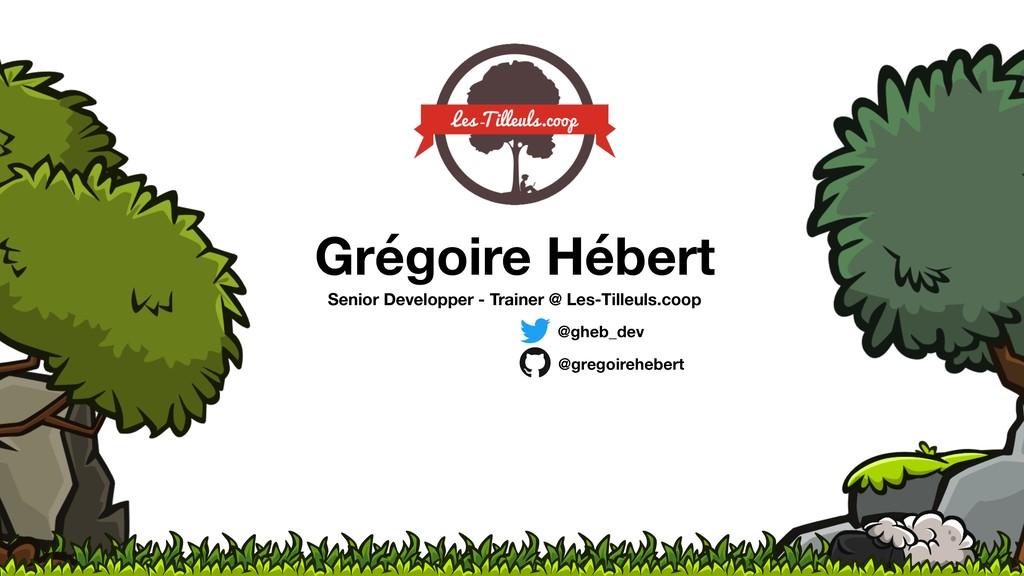Grégoire Hébert Senior Developper - Trainer @ L...