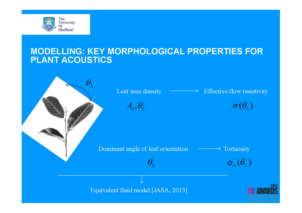 MODELLING: KEY MORPHOLOGICAL PROPERTIES FOR PLA...