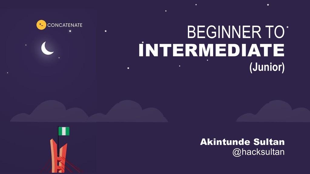 1 BEGINNER TO INTERMEDIATE (Junior) Akintunde S...
