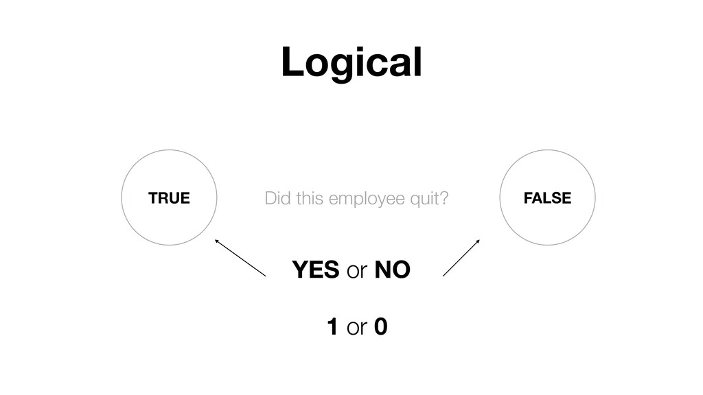 TRUE FALSE YES or NO Logical Did this employee ...