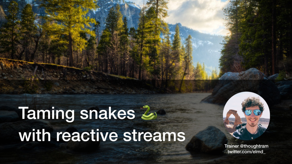 Taming snakes  with reactive streams Trainer @t...