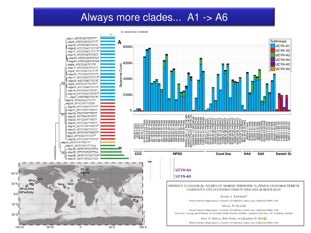 Always more clades... A1 -> A6