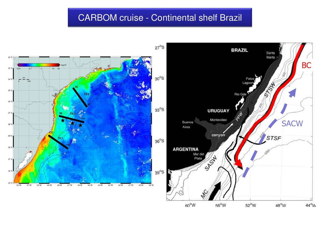 CARBOM cruise - Continental shelf Brazil SACW BC