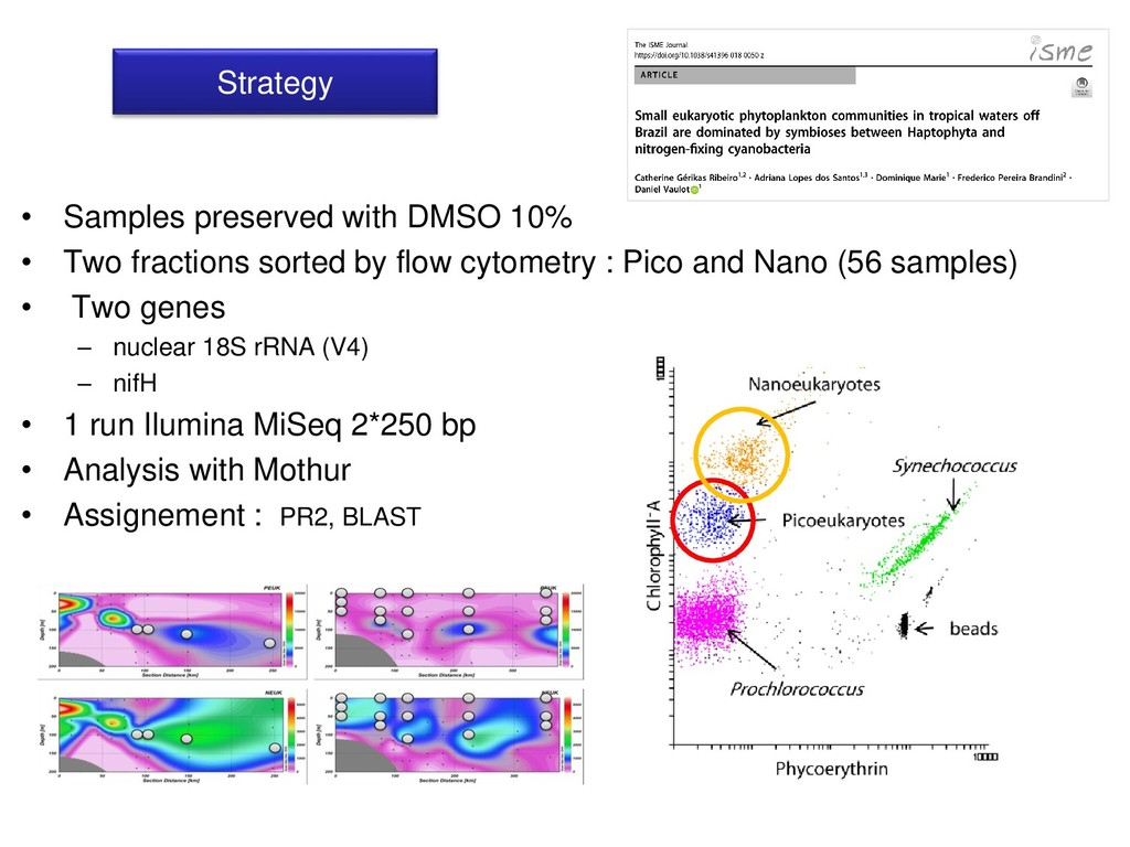 Strategy • Samples preserved with DMSO 10% • Tw...