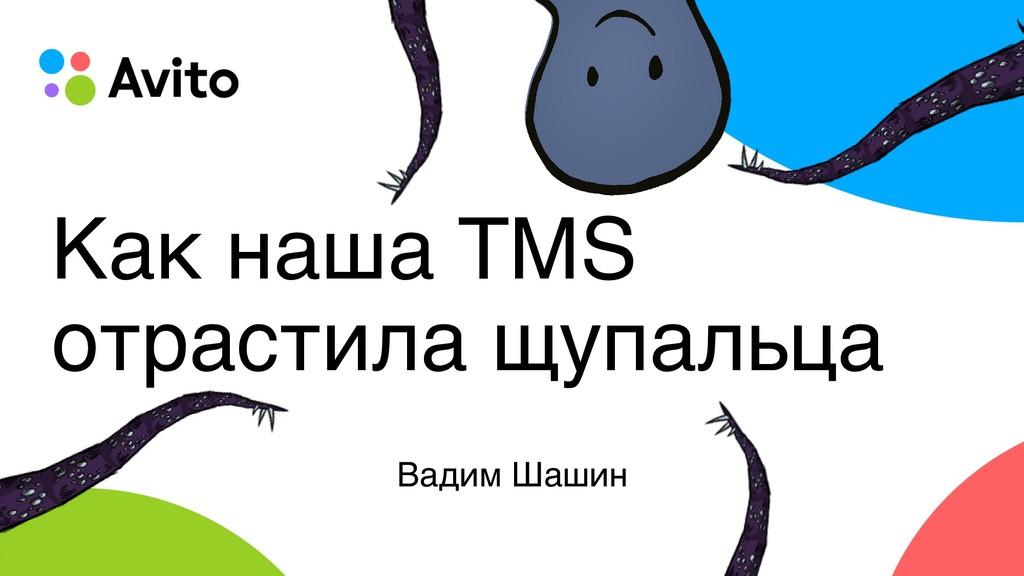 Как наша TMS отрастила щупальца Вадим Шашин