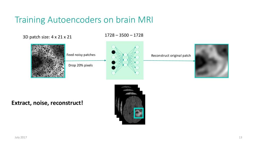 Training Autoencoders on brain MRI July 2017 13...