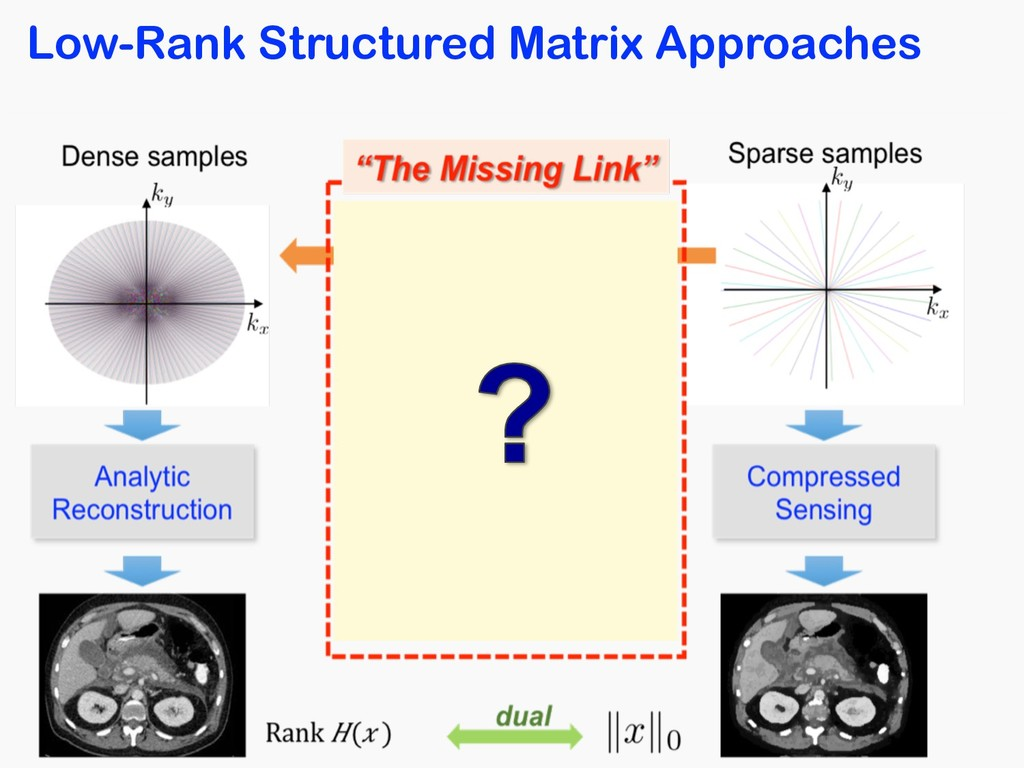 Low-Rank Structured Matrix Approaches
