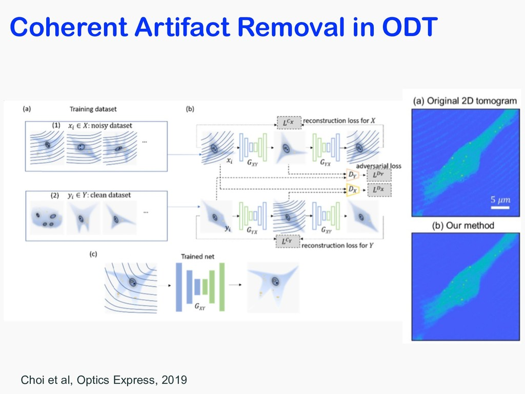 Coherent Artifact Removal in ODT Choi et al, Op...