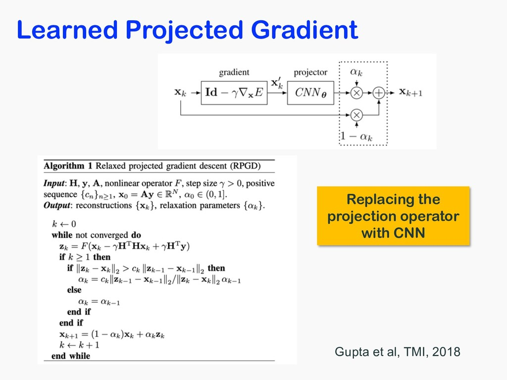 Learned Projected Gradient Gupta et al, TMI, 20...