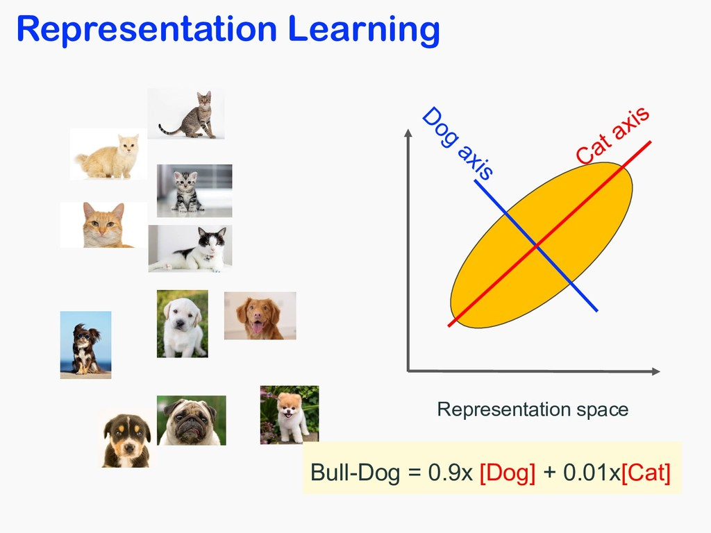 Representation Learning Representation space Ca...