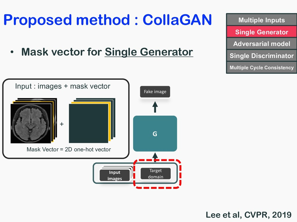 • Mask vector for Single Generator Input images...