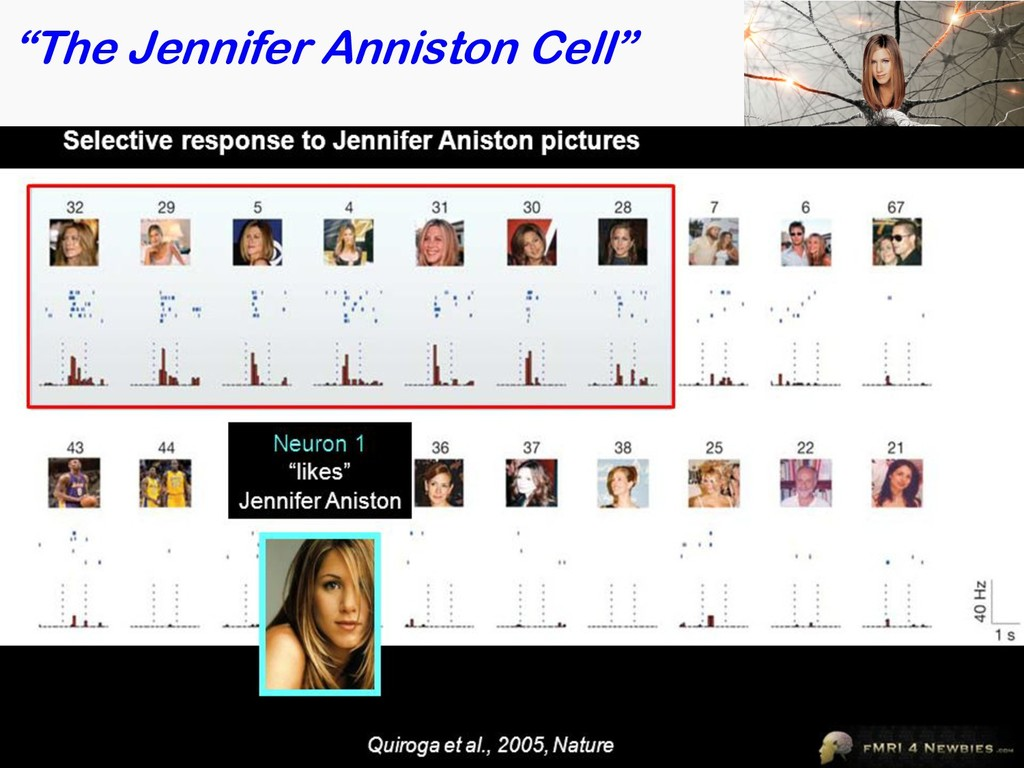 """The Jennifer Anniston Cell"" 40 Quiroga et al, ..."