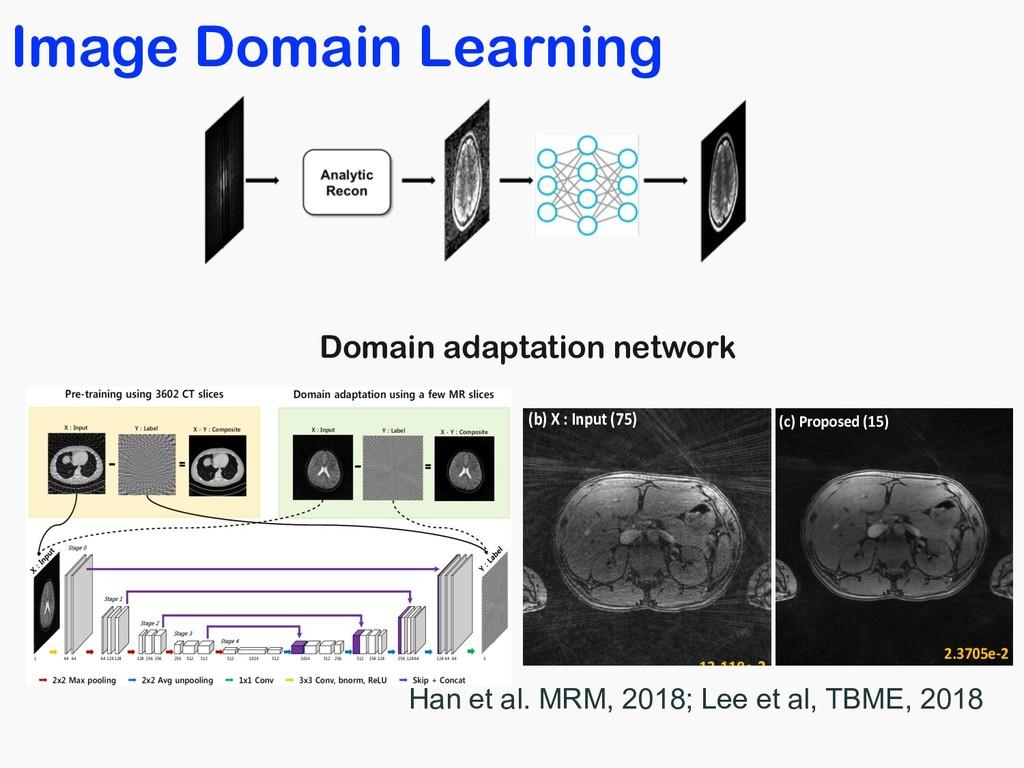 Image Domain Learning In vivo golden angle radi...