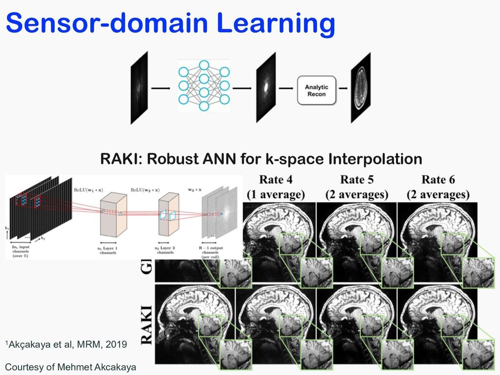 Sensor-domain Learning RAKI: Robust ANN for k-s...