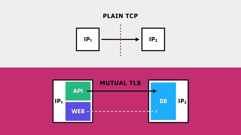 IP2 IP1 IP1 IP2 MUTUAL TLS PLAIN TCP WEB DB API