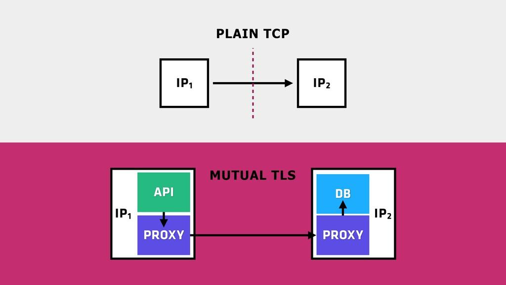 IP2 IP1 IP1 IP2 MUTUAL TLS PLAIN TCP PROXY DB A...