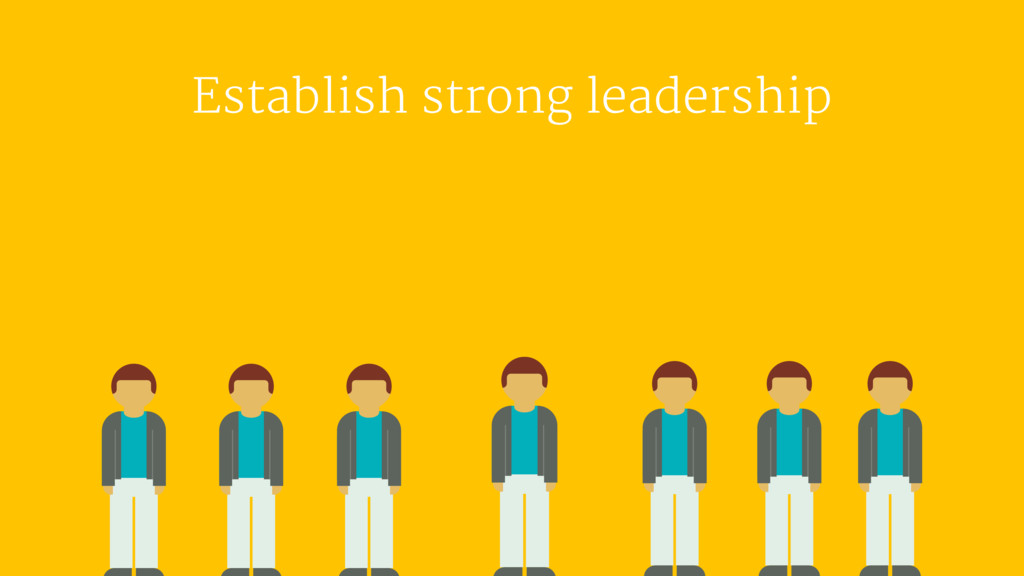 Establish strong leadership