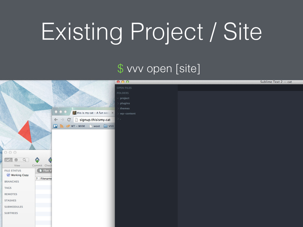 Existing Project / Site $ vvv open [site]