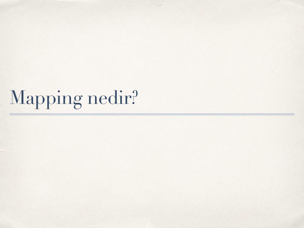 Mapping nedir?
