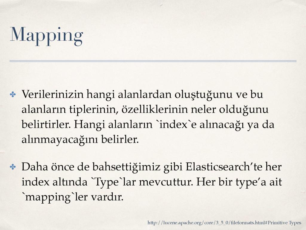 Mapping ✤ Verilerinizin hangi alanlardan oluştu...