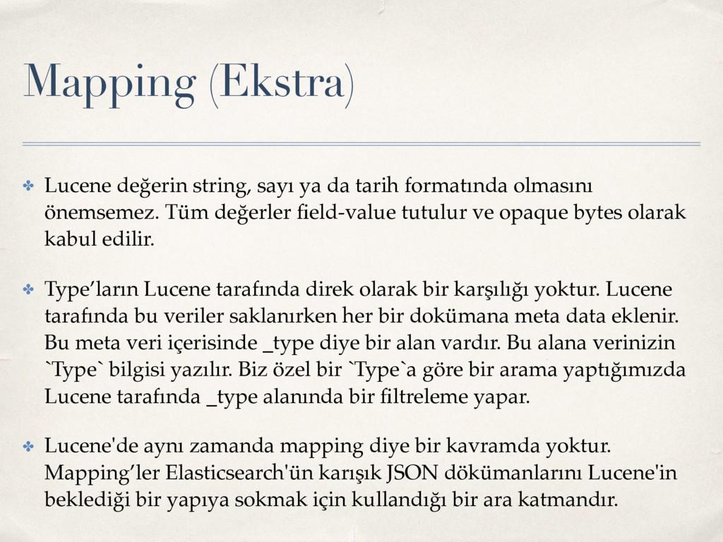 Mapping (Ekstra) ✤ Lucene değerin string, sayı ...