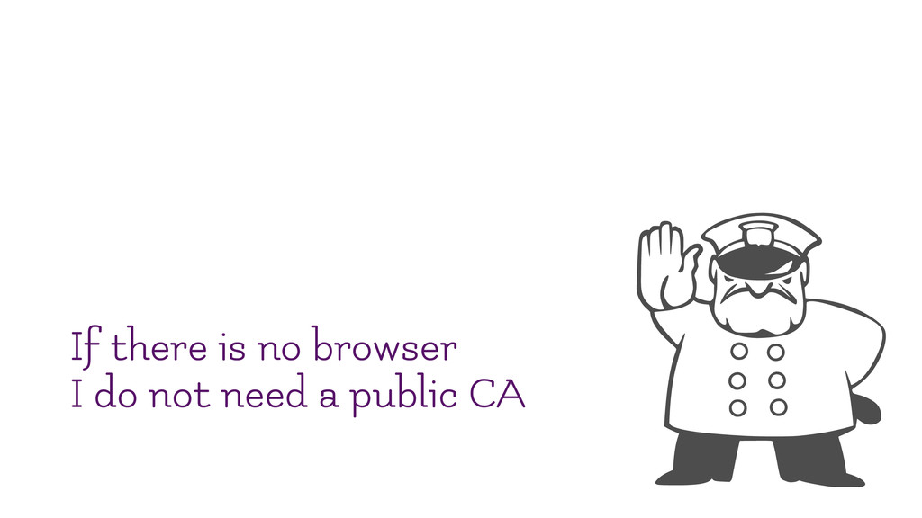 If there is no browser I do not need a public CA