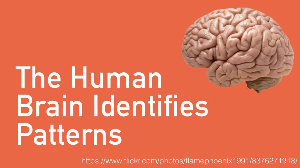 The Human Brain Identifies Patterns https://www...