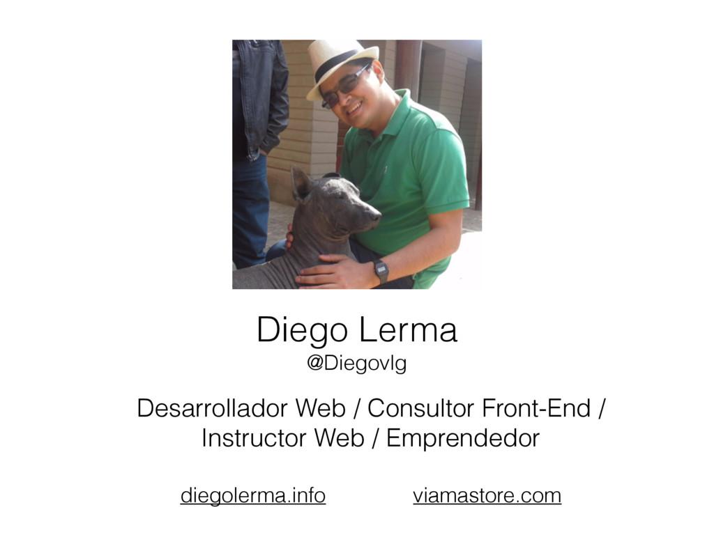 Desarrollador Web / Consultor Front-End / Instr...